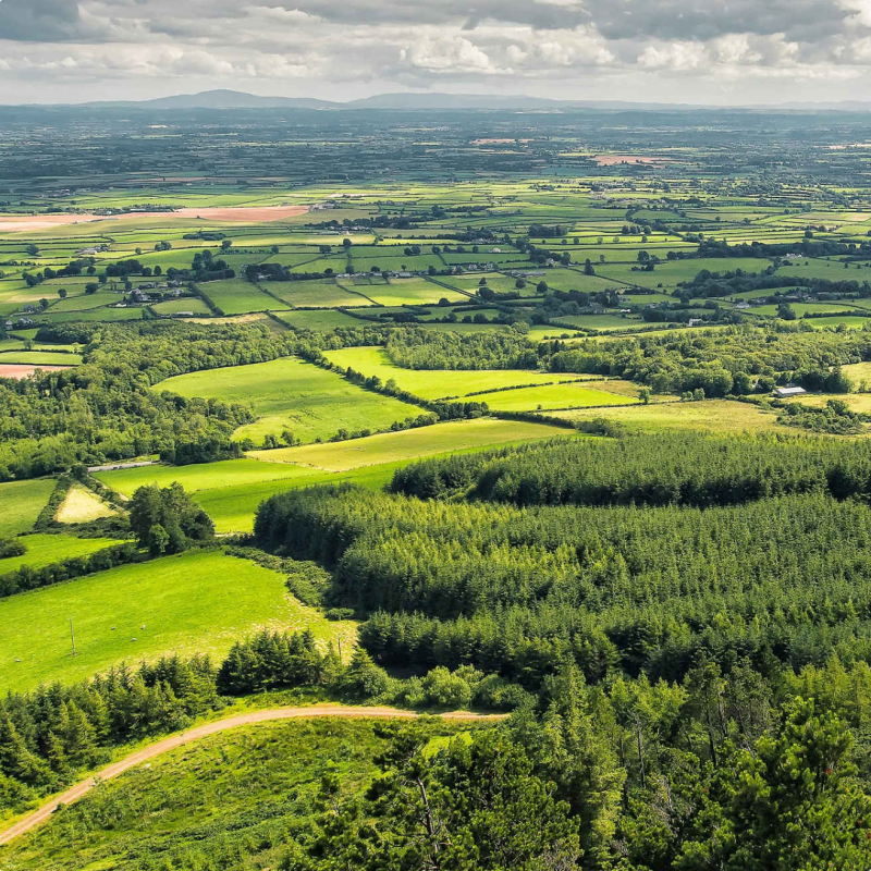 Rolling out rural broadband in Ireland